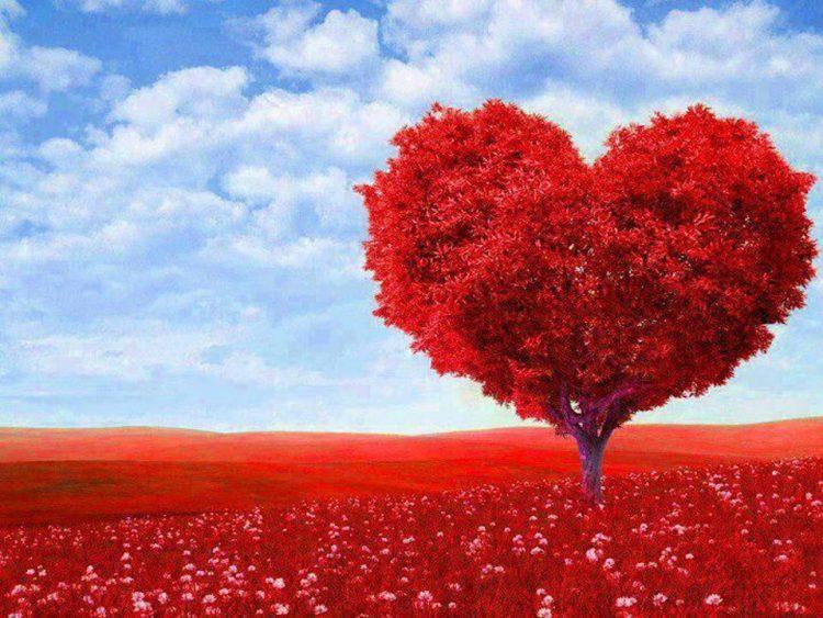 sevgililer gününde sevgilinize ne alabilirsiniz